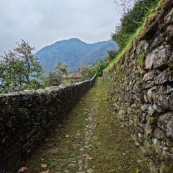Strada Regia è un percorso pedonale, o ciclabile, di una trentina di chilometri che incontra una serie di paesi tra i più interessanti del Lario.