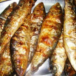 Agone in carpione è un protagonista nella cucina del lago di Como